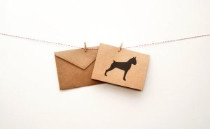Silhouette Boxer Note Cards